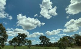 Australian government on the hunt for cloud providers