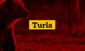 Turla hacker group steals antivirus logs to see if its malware was detected