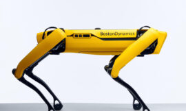 Terrifying robot dog now available for private use