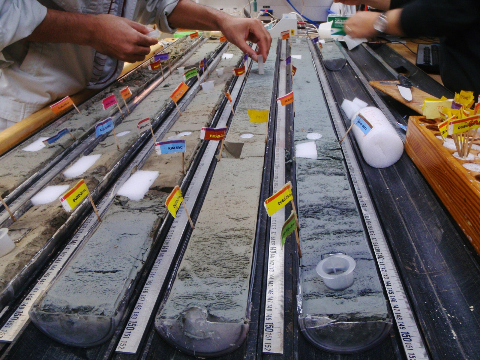 Mad Scientists Revive 100-Million-Year-Old Microbes
