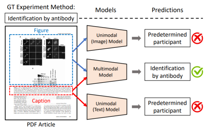 Researchers release Melinda dataset to train AI systems for analyzing study methods