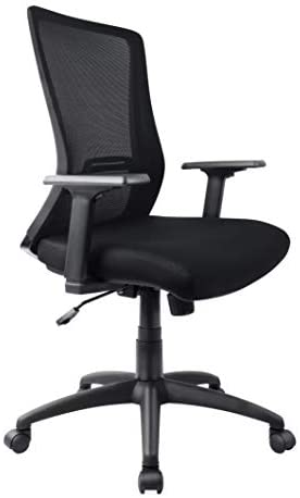 Ergonomic Office Chair Mesh Desk Chair High-Back Swivel Computer Chair with Adjustable Arms, Seat Height and Lumbar Support (Black)
