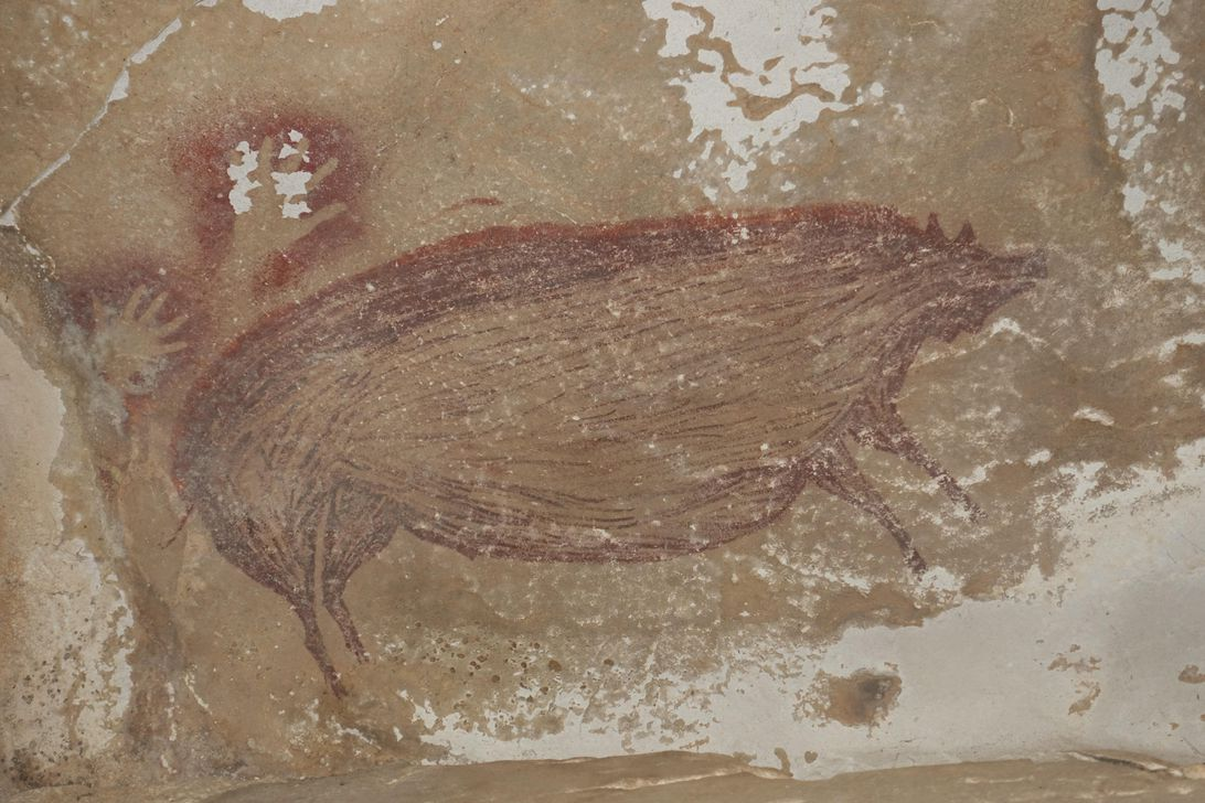 See the world's oldest cave painting, a warty pig dating back 45,500 years