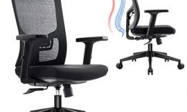 Ergousit Ergonomic Mesh Office Chair, Home Office Desk Chair High Back, Executive Swivel Computer Chair with Adjustable Lumbar Support Headrest and Armrests, Wide and Thick Seat Cushion 330lbs
