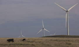Amazon warns Texas: Don't pass bill that would drive up wind power costs