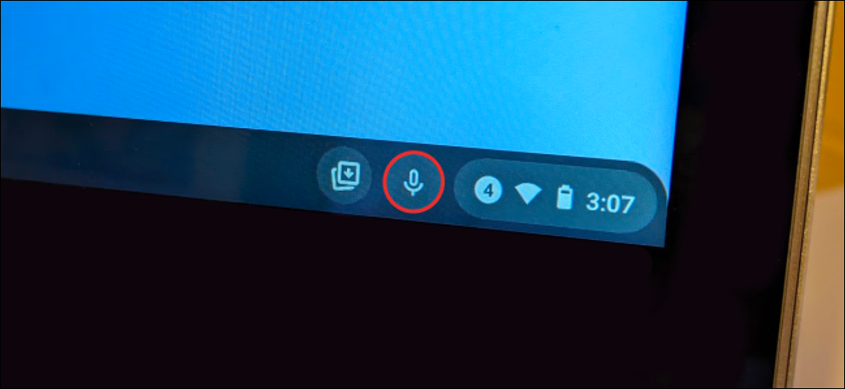Read more about the article How to Enter Text with Your Voice on a Chromebook