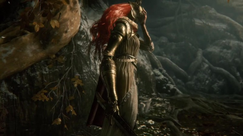 Read more about the article How Elden Ring's Open World Works