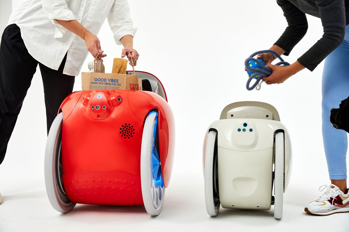 Read more about the article Gitamini is a cute, compact, cargo-carrying robot that will follow you around like a dog