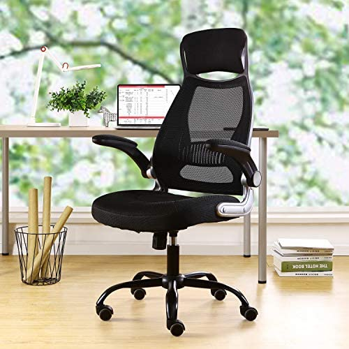 Read more about the article Home Office Ergonomic Mesh Office Chair Computer Chair with Flip-up Arms Adjustable Lumbar Support Desk Chair (Black)